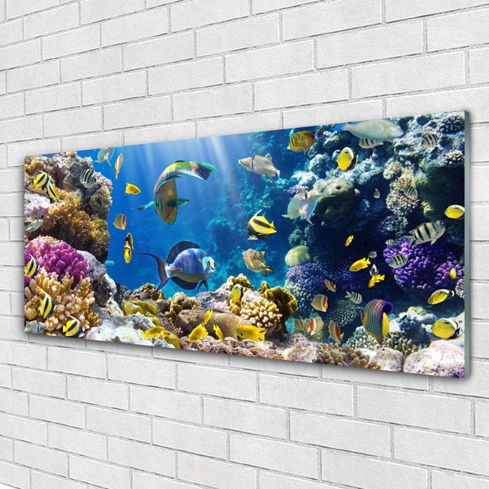 Details Zu Glasbilder Wandbild Druck Auf Glas 125x50 Korallenriff Natur Glasbilder Esg Glas Wandbilder