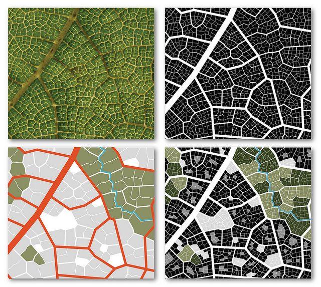Leaf-city, part 1