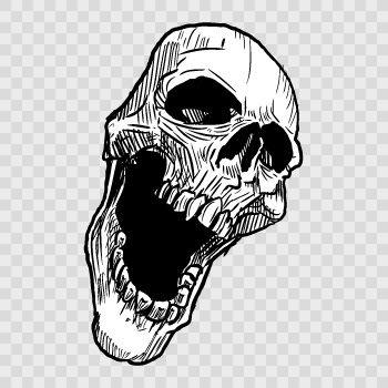 Skull smile 02444