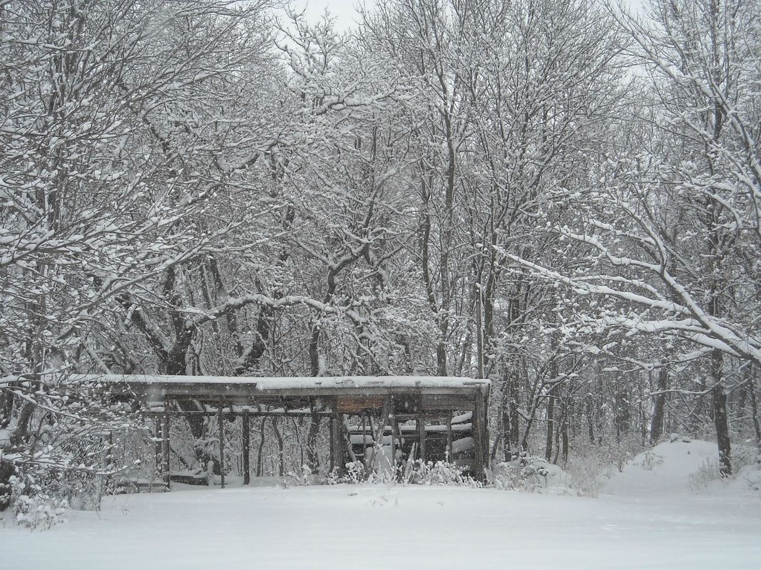 Just found this sub, had to share. Minnesota at its finest.  - http://earth66.com/winter/just-sub-share-minnesota-finest/