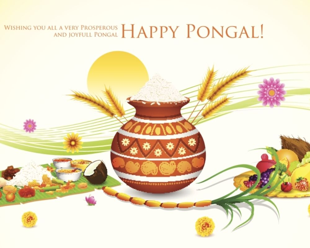 Happy Thai Pongal Messages Wishes HD Images Photos Videos