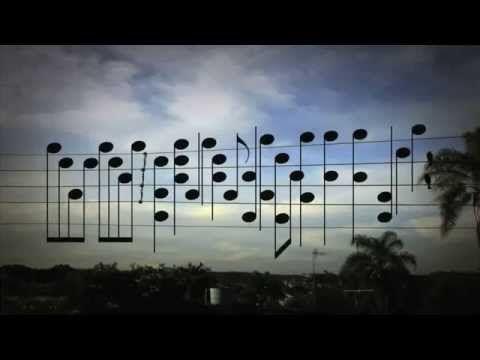 A song inspired by using the exact location of the birds on electric wire. Enjoy weekend! /// Ein Song, inspiriert durch die exakte Position von Vögeln auf elektrischen Leitungen. Schönes Wochenende!