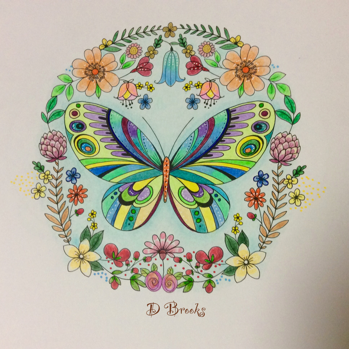 From Joyous Blooms To Colour By Eleri Fowler