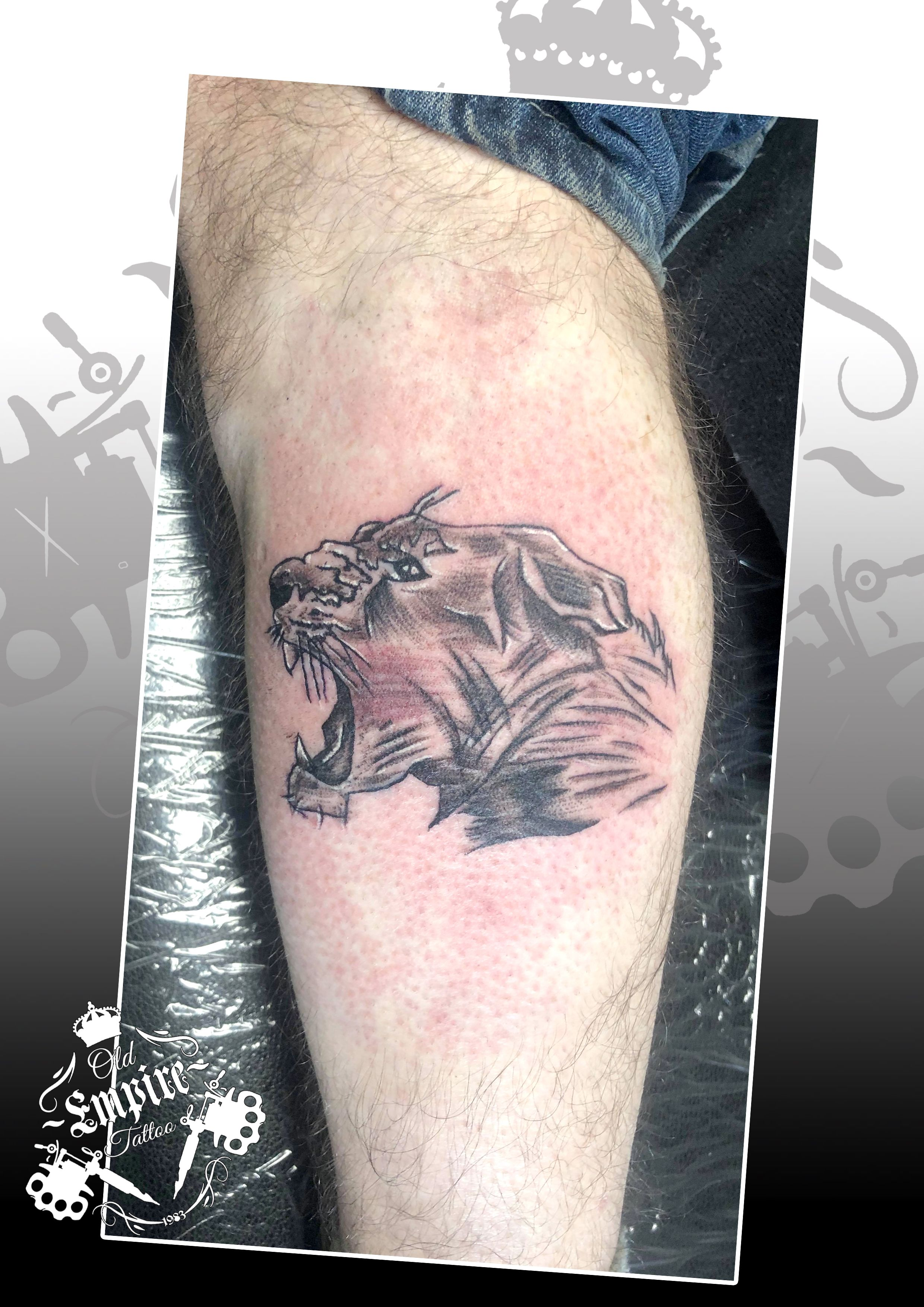 A cool #LionTattoo #SketchStyle done in #BlackAndGrey great placement and great client 👍  #Lion #WildLifeTattoo #LegTattoo #LowerLegTatt #InkedGuys @OldEmpireTattoo