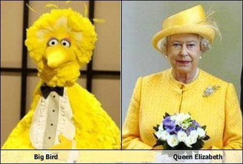 very similar 0 Unbelievable similarities (18 photos)
