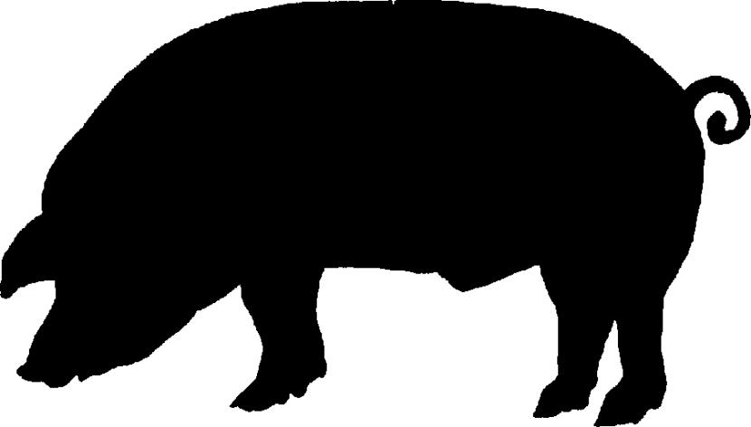 Pig Silhouette Clip Art Clipart Best Clipart Best Pig Silhouette Silhouette Clip Art Pig Art