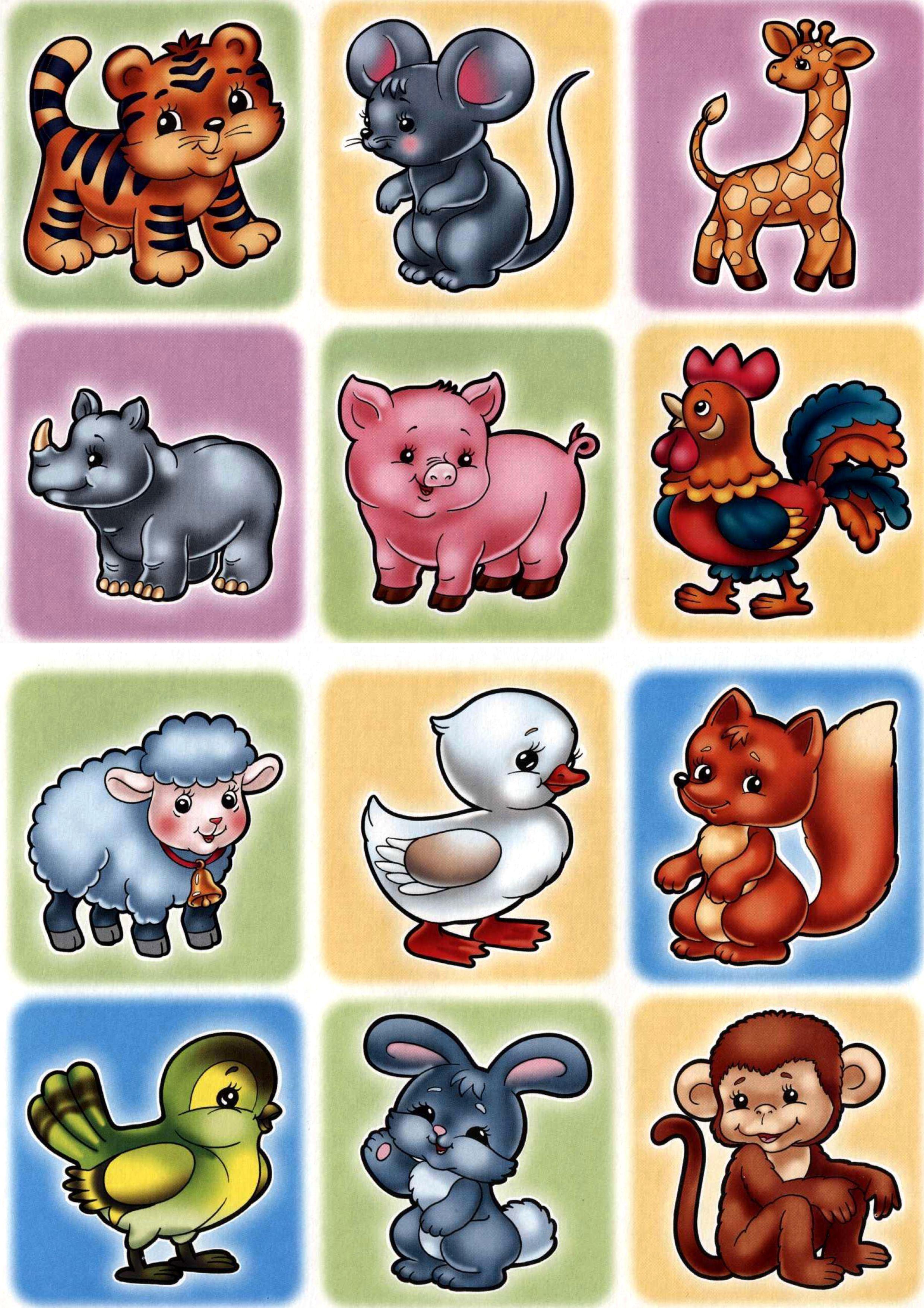 картинки про животных распечатать цветные бассейна