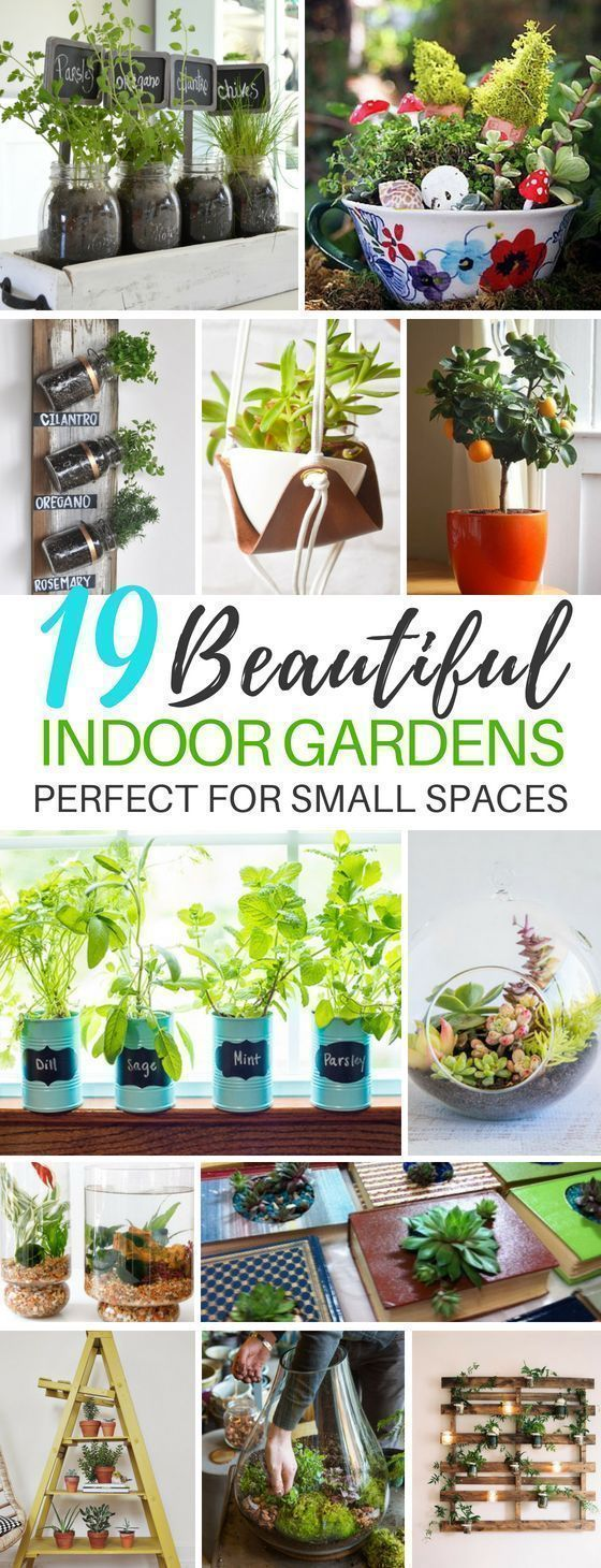 Indoor Garden Ideas That'll Make Your Home Come to Life These 19 Indoor Gardening Projects Ar...