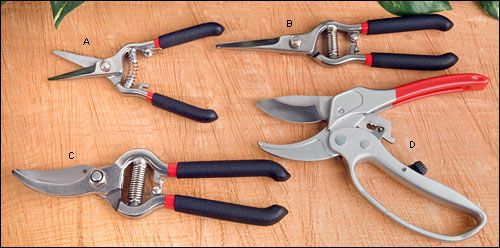 All-Weather Pruning Tools - Gardening   Grow   Pruning tools