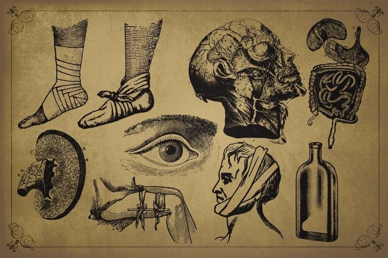 100 Vintage Medical Illustrations - Creative Fabrica
