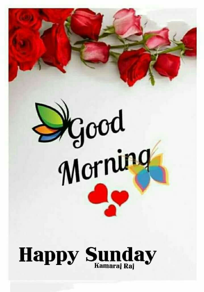 Good morning sunday greetings morning messages in 2018 pinterest good morning sunday greetings m4hsunfo
