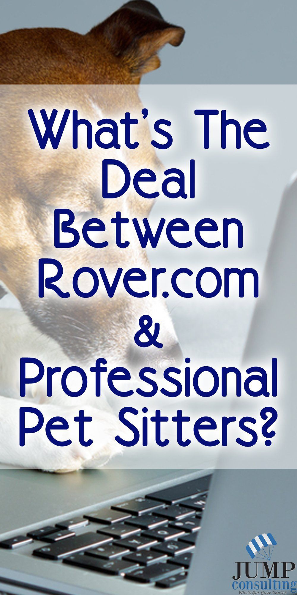 Do and professional pet sitters like each other