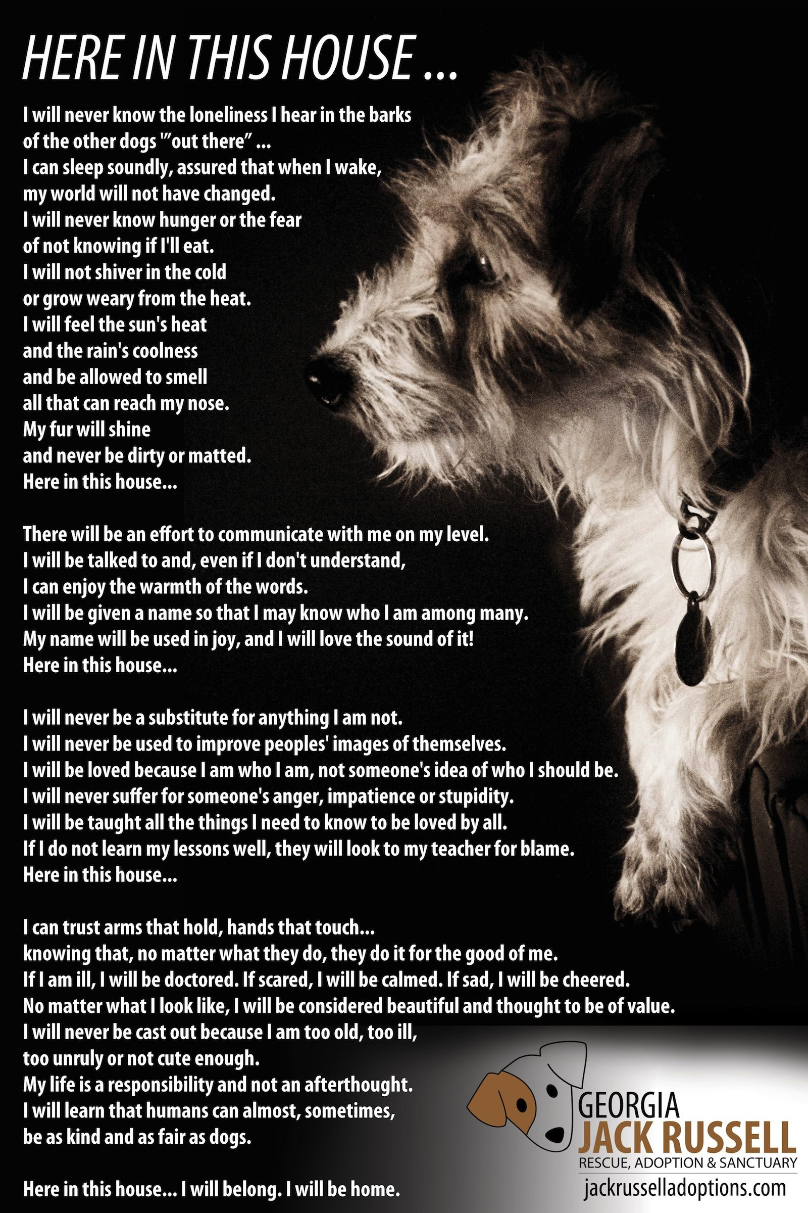 Here In This House Adopt A Jack Russell Rescue Georgia Jack Russell Dog Poems Dogs Dog Quotes