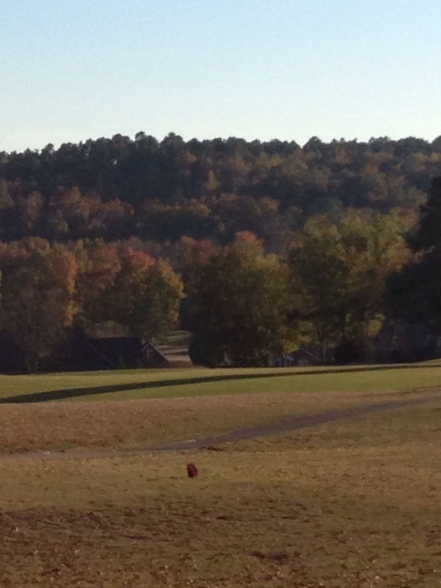 8 Tee Box At Beech Creek Golf Course Magnificent View Country Roads Golf Courses Views