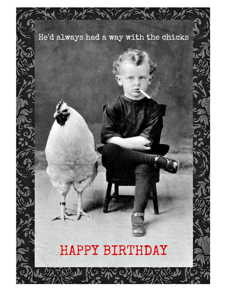 Birthday Quotes Chicks Birthday Card. Birthday Cards for