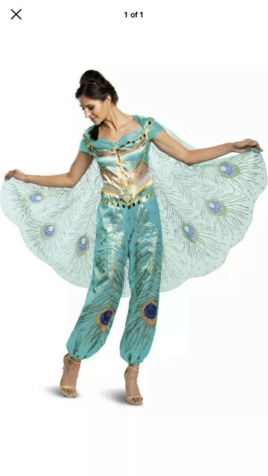 Halloween Costume Woman's Disney Jasmine Medium or Large