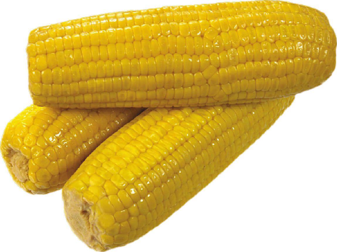 Choclos Maíz Verduras Legumbres Hortalizas Material Para La Escuela Sweet Corn Corn Kernel Candy Corn