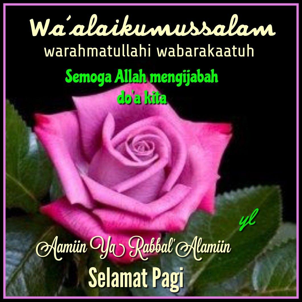 Pin Oleh Yuli Yl Di Salam Islami Kutipan Selamat Pagi Kata Kata Mutiara Bunga Cantik