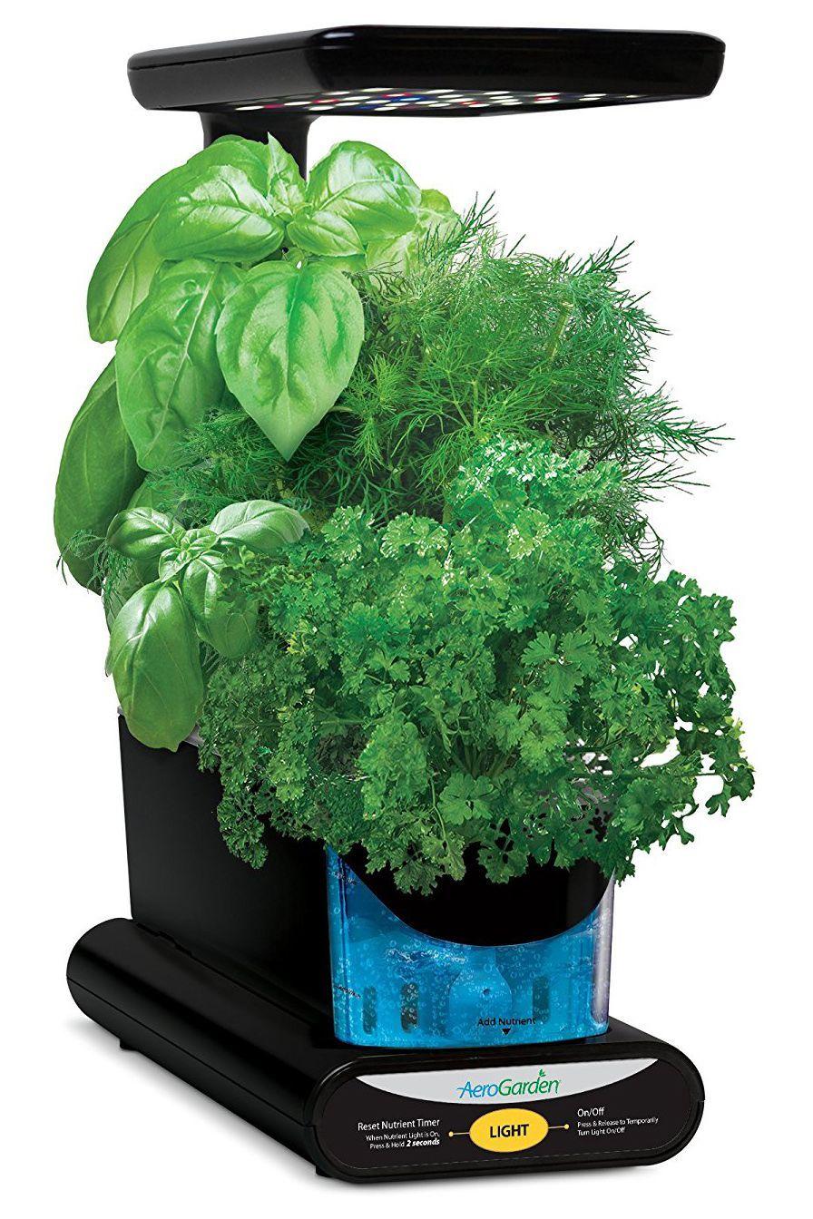 Indoor Aerogarden With Herb Seed Pod Kit Hydroponicseasy 640 x 480