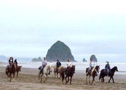 Sea Ranch Rv Cannon Beach Oregon With Horse Les