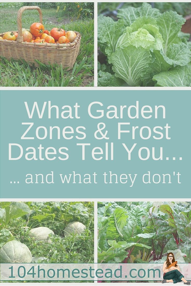There is often some confusion about what gardening zones and frost dates are and what that information means. Also, there are some things that these tools don't tell you that are important to the gardener.