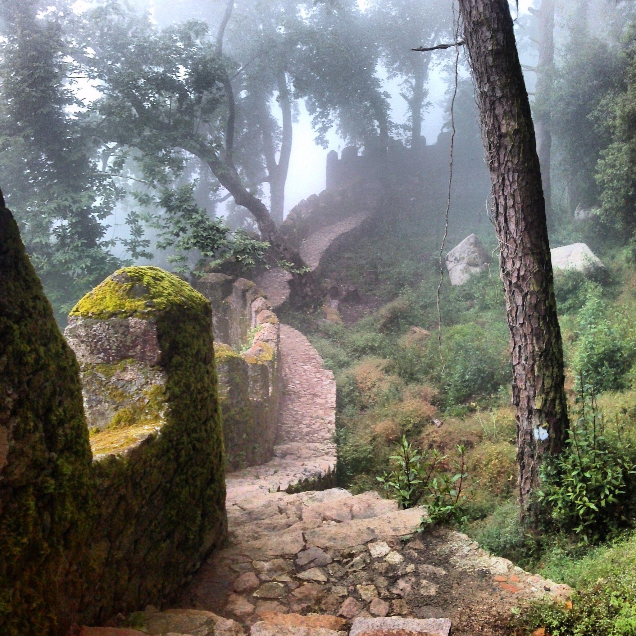 À Conquista do Castelo  - Castelo dos Mouros ,Sintra, Jun 2013