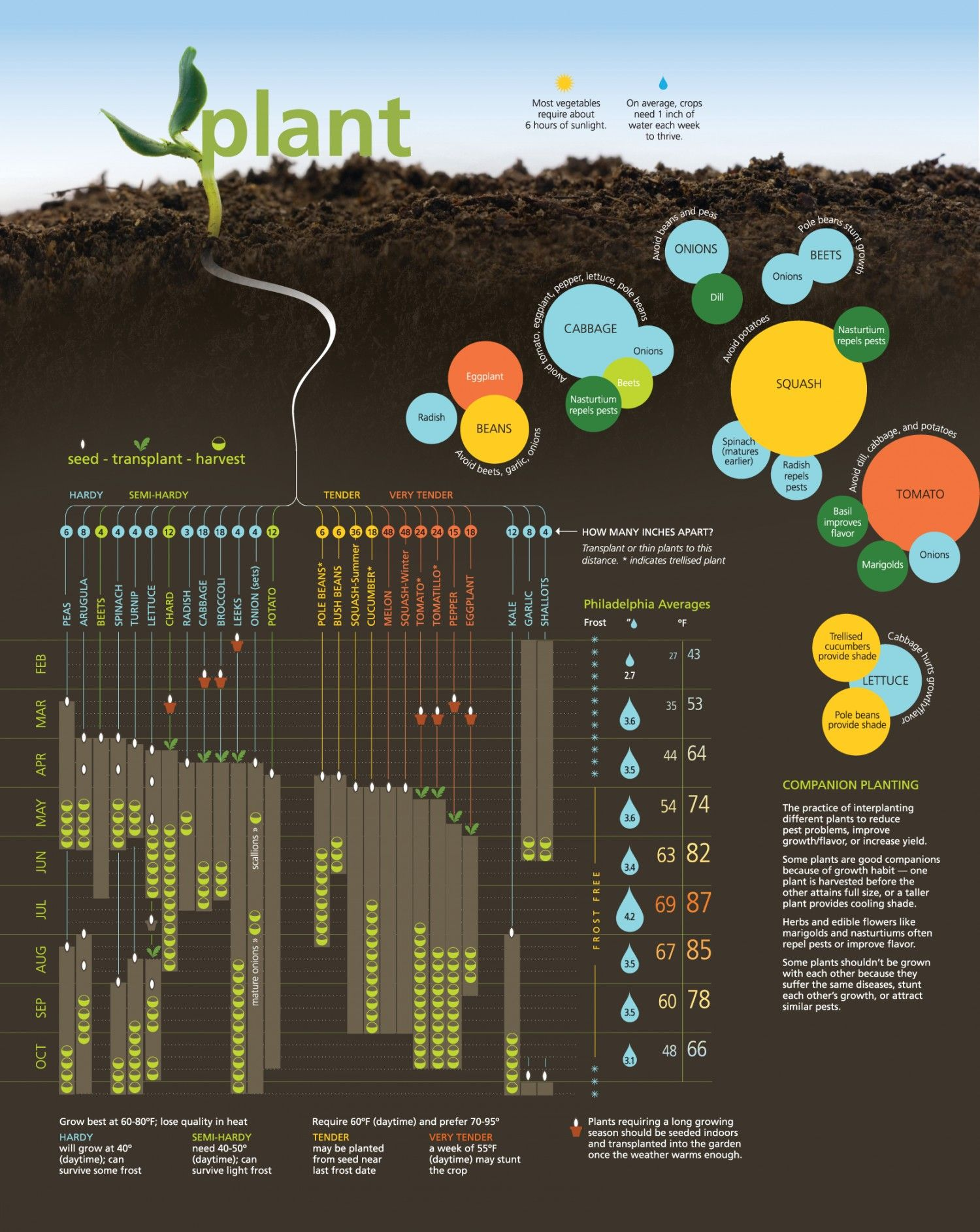 Vegetable garden graphic - Planting Schedule For A Philadelphia Area Vegetable Garden From The 2011 Maskar Design Infographic