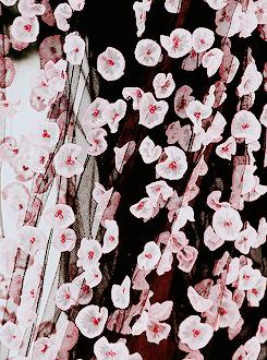 Le Temps Retrouve   armaniprives: Christian Dior Haute Couture S/S...