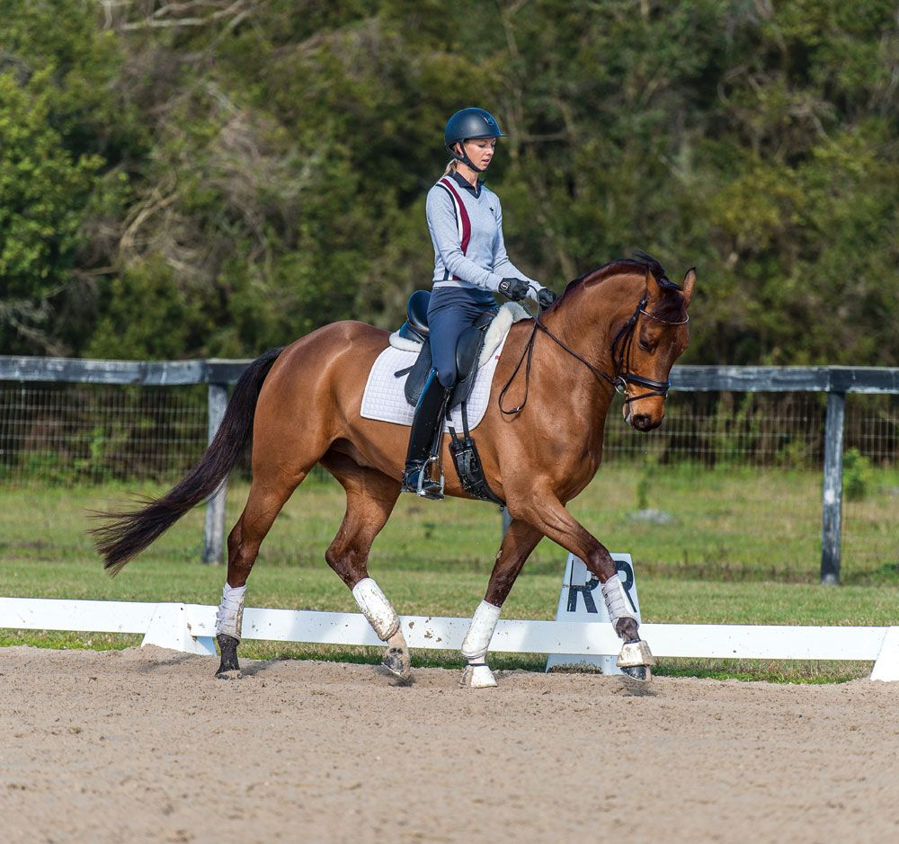 Unlock your horse\'s dressage potential with this rising ...