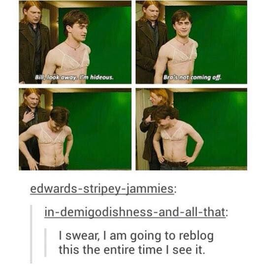 Daniel Radcliffe in a bra. Now I've seen everything.