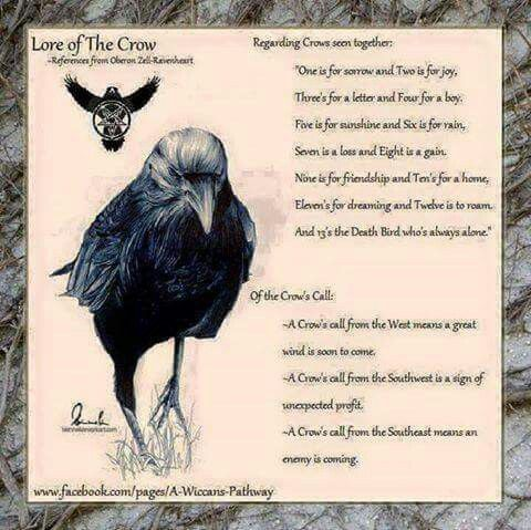 Pin By Rebecca Oxborrow On Animal Signs Info Inspiration