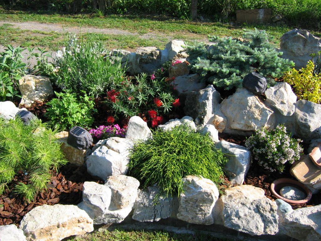 Fiori Da Giardino Roccioso giardino roccioso - cerca con google   giardino roccioso
