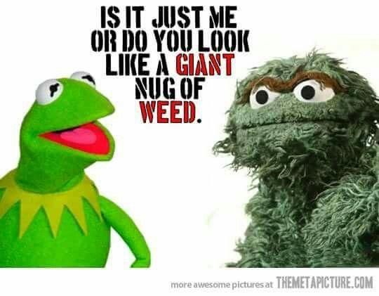 Giant nug of weed