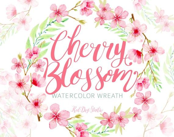 Photo of Watercolor Pink Blossom Wreath Illustration, Hand Painted Cherry Blossom Flower Wreath Design, Water