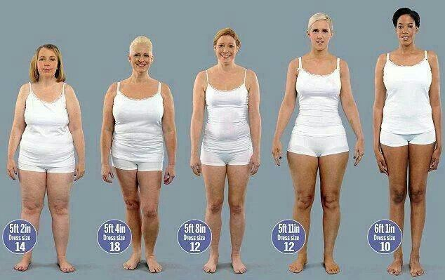 Same weight-different body height and shape | Weight Loss ...
