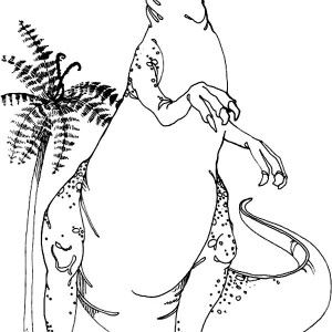 allosaurus allosaurus standing tall coloring page allosaurus standing tall coloring page