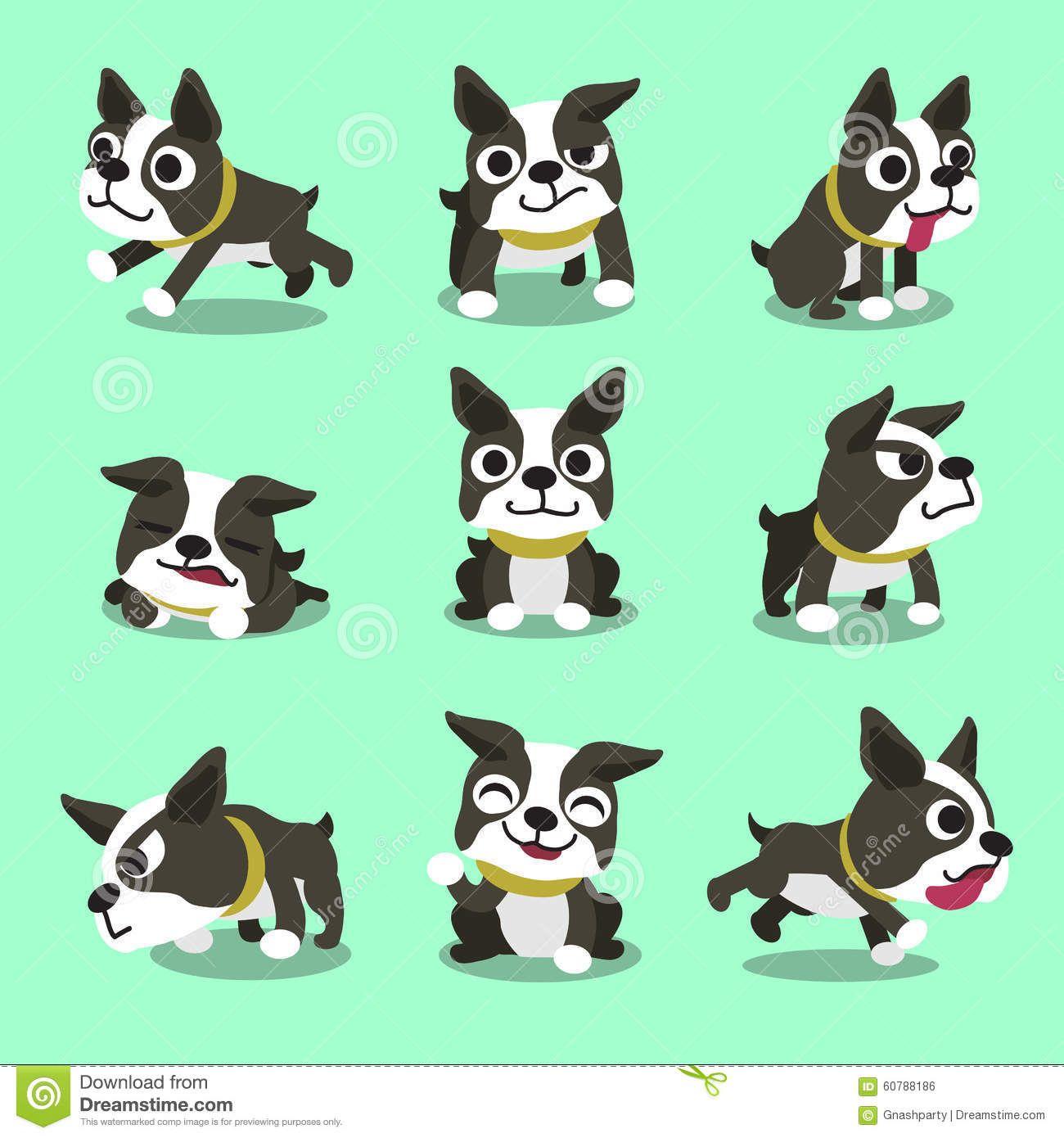 Illustration About Cartoon Character Boston Terrier Dog Poses For Design Illustration Of Character Boston Terrier Funny Boston Terrier Dog Boston Terrier Art