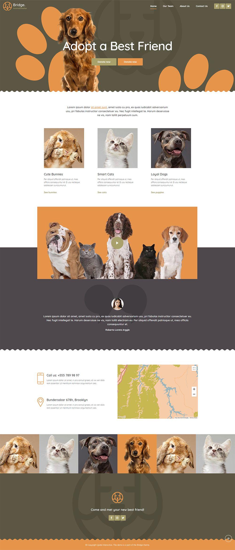 Bridge Wordpress Theme Animal Shelter Demo Pet Websites Animal Shelter Banner Design Layout