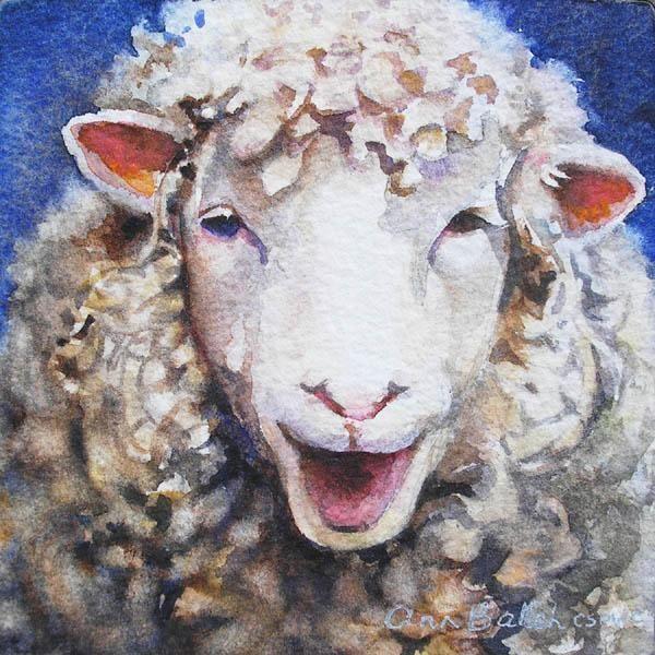 подборе овцы рисунок красками то, что отец