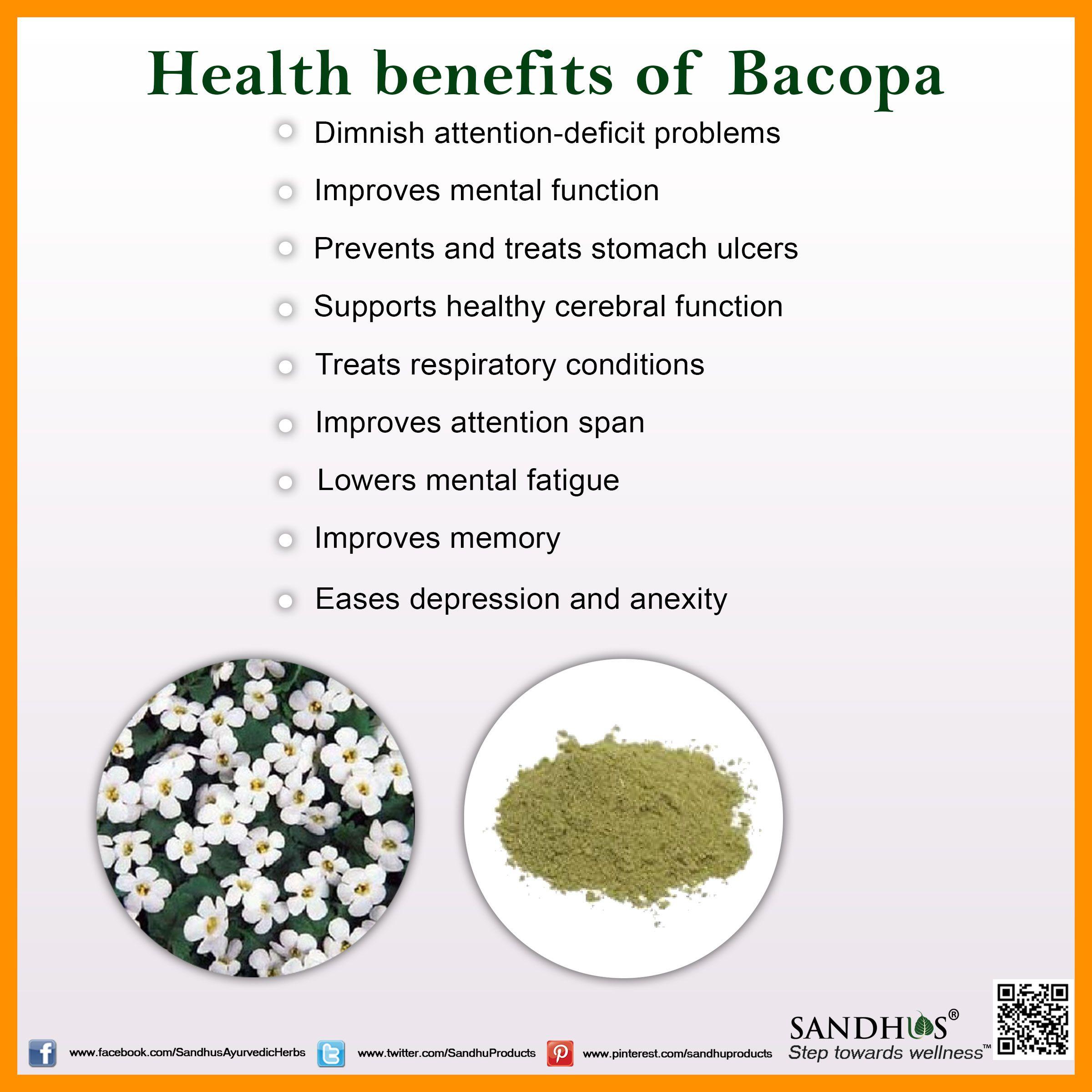 Health Benefits Of Bacopa Ayurveda Sandhuproducts