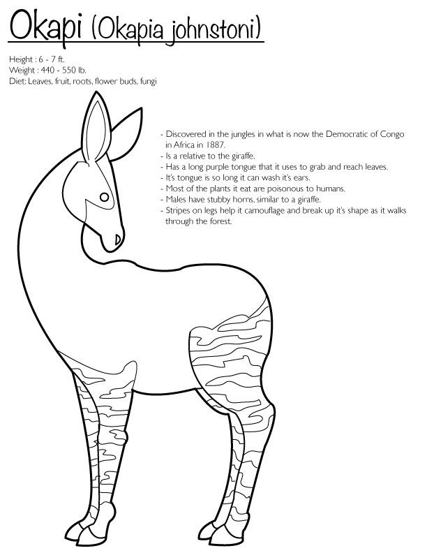 Okapi (Coloring Page) by Finwitch on DeviantArt | Kids | Pinterest ...