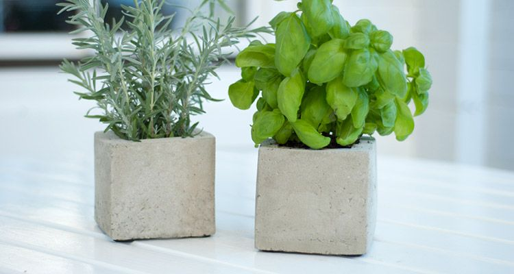 mit beton lassen sich coole pflanzen cubes f r k chenkr uter oder zierpflanzen einfach selber. Black Bedroom Furniture Sets. Home Design Ideas