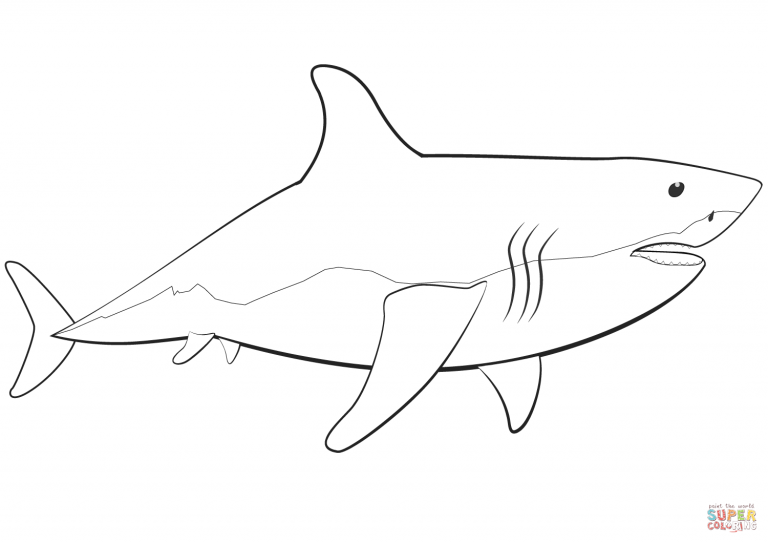 Great White Shark Outline Coloring Pages Printable