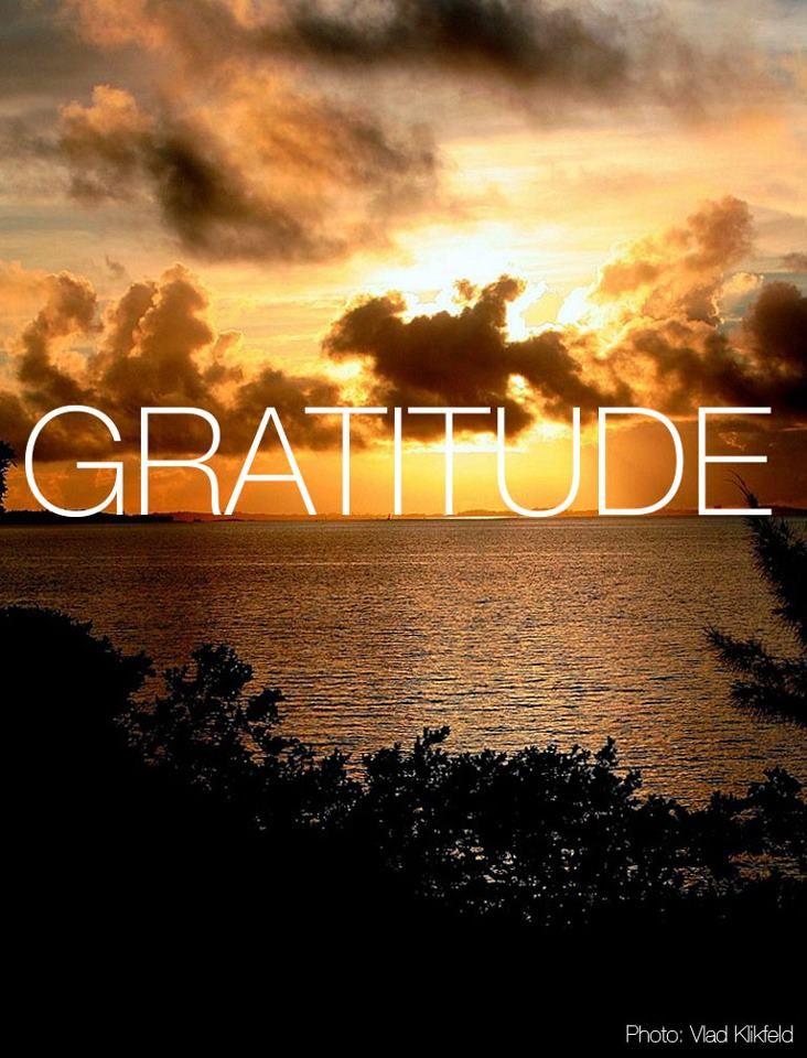Bermuda | So Much More Gratitude