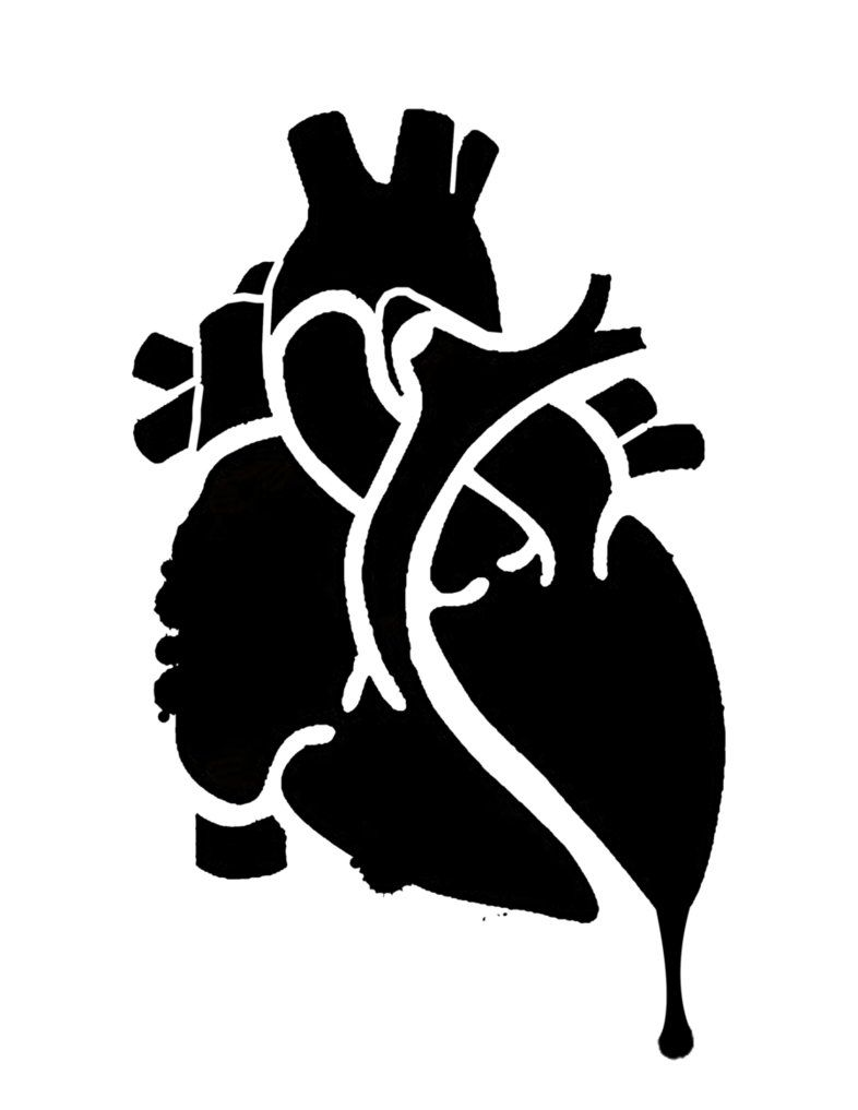Oh My This Is A Heart Anatomy Stencil To Use As A Pumpkin Carving