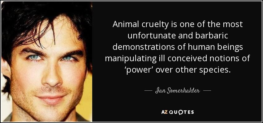 Animal Cruelty Quotes Enchanting Ian Somerhalder Quote Animal Cruelty Is One Of The Most