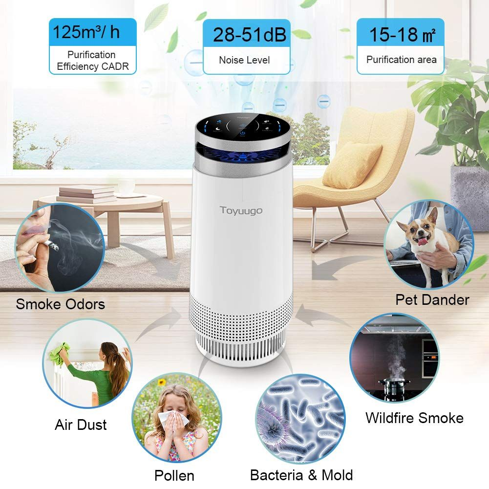 toyuugo Air Purifier, True HEPA Air Cleaner with Active