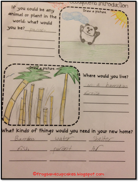 ecosystem freebie follow up as seen on fourth grade friends. Black Bedroom Furniture Sets. Home Design Ideas