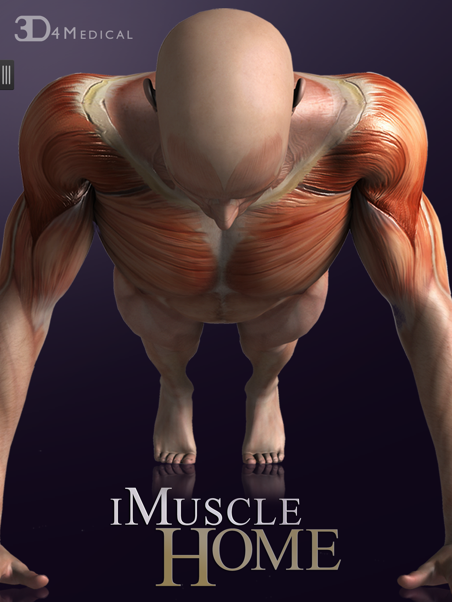 Discover our new iMuscle Home App for iPhone & iPad, available on ...
