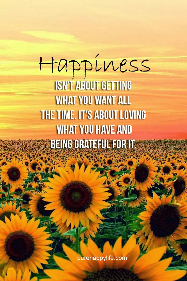 Happiness Quote Happiness isn't about getting what you